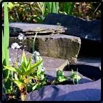 blue slate rockery stone